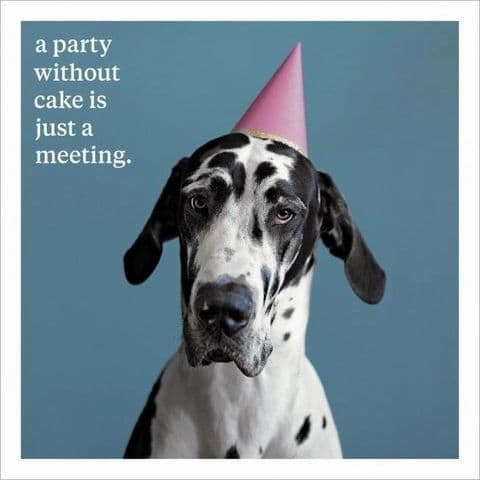 A Party Without A Cake Is Just A Meeting